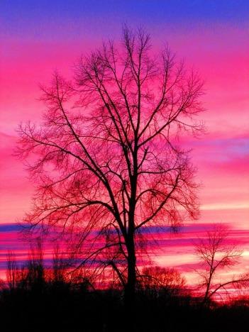 sunrise-1184603_960_720